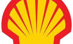 Browse partner shell and nexus partnership