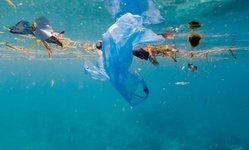 Browse partner plastic in ocean 768x432
