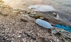Browse partner marine debris 20190122 by yimji wk shutterstock 1282011301 web 300x200