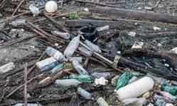 Browse partner plastic pollution