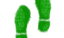 Browse partner hyatt to reduce carbon footprint