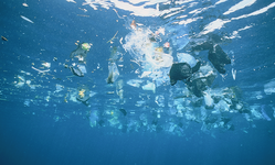Browse partner ocean plastic pollution