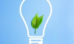 Browse partner 636939425708705630leaf sustainable idea bulb
