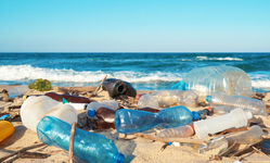 Browse partner the new wave of plastic hoping to wipe out pollution