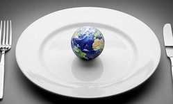 Browse partner 637195198013688272sustainability earth plate
