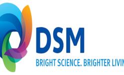 Browse partner logo dsm