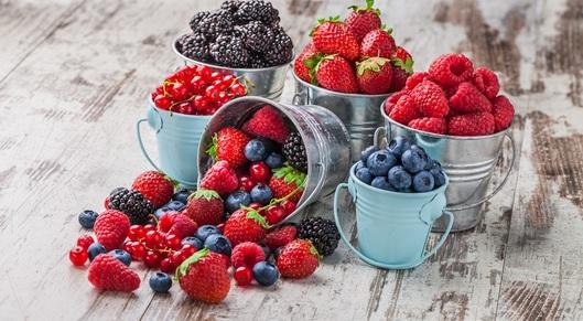 Partner show hortifrut mix berries