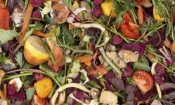 Browse partner evolution of composting2 0