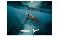 Browse partner back our oceans turtle