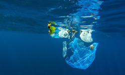 Browse partner ocean plastic waste
