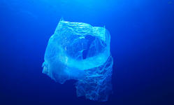 Browse partner innovative tech to clean the oceans pollution problem plastic bag ocean 51288178