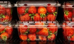 Browse partner strawberry package 20200528 by dolores m. harvey shutterstock 1440437636 web 1024x682