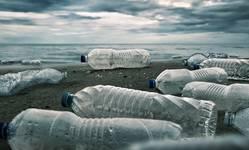 Browse partner plastic bottle shutterstock