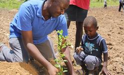 Browse partner 042020 fn sustainability timberland haiti tree planting 9 credit sebastian petionsfa