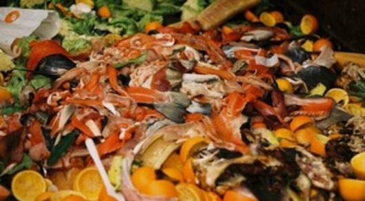 Partner show s300 gi market food waste
